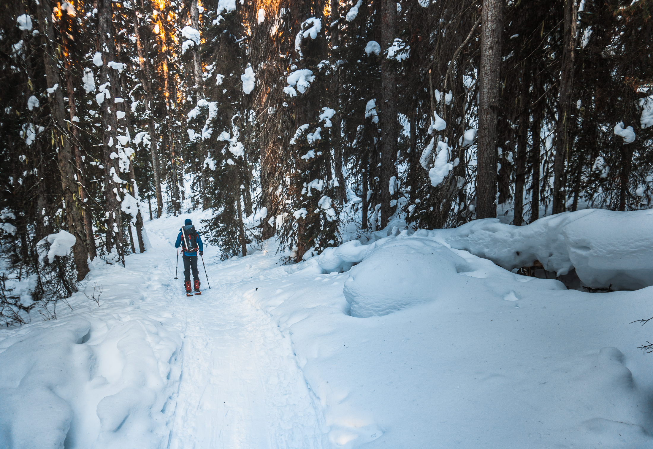 Skinning up the trail to Boom Lake in the Winter
